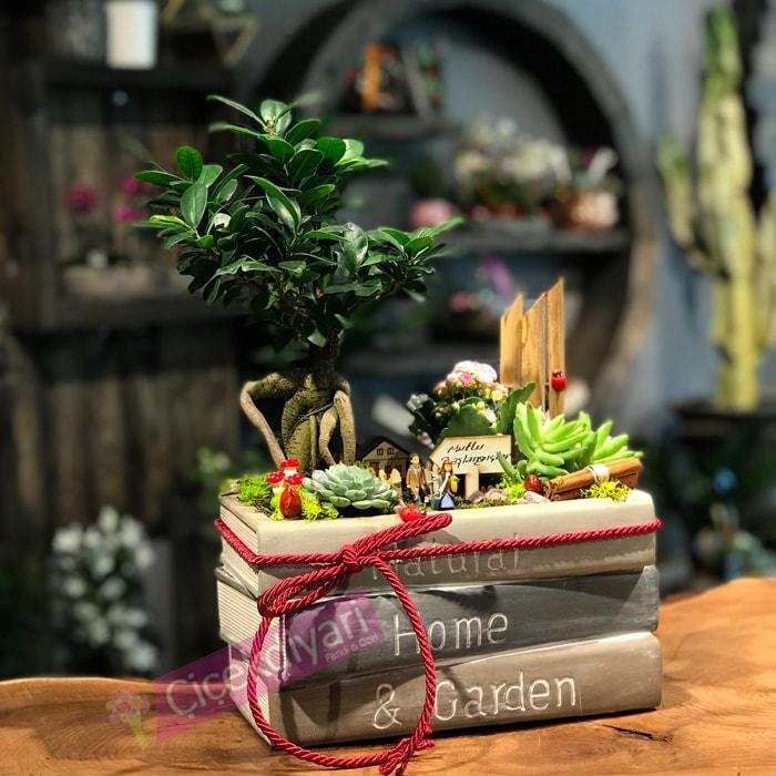 sevgiliye-bonsai-alinir-mi